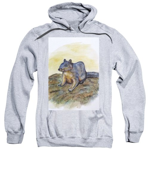 What Are You Looking At? Sweatshirt