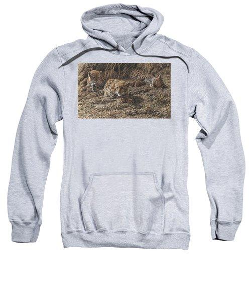 What Do You Hear? Sweatshirt