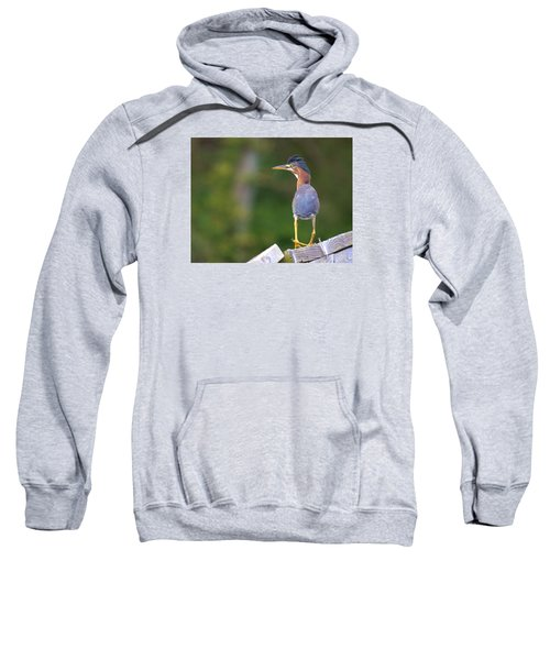 What You Looking At? Sweatshirt