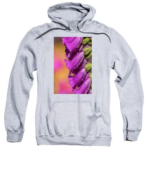 Where Color Grows Sweatshirt