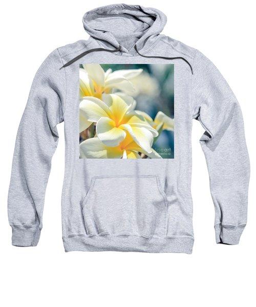 Where Happy Spirits Dwell - Cearnach Sweatshirt
