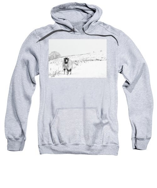 Which Way Is South? Sweatshirt