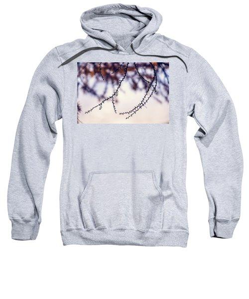 Whip Sweatshirt