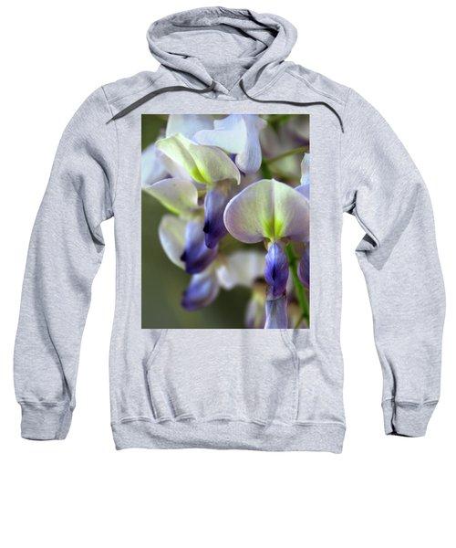 Wisteria White And Purple Sweatshirt