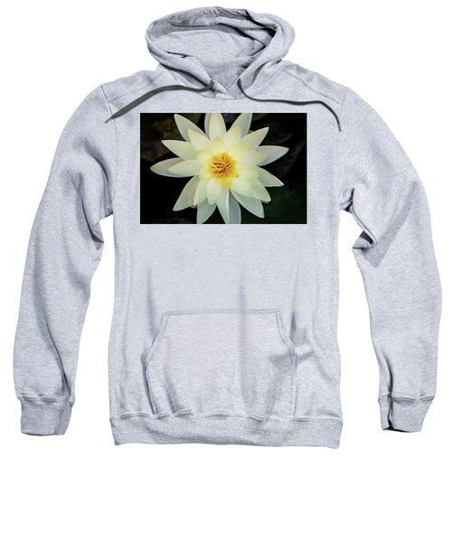 White And Yellow Water Lily Sweatshirt