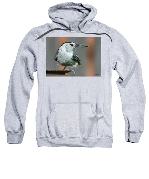 White-breasted Nuthatch With Sunflower Seed Sweatshirt