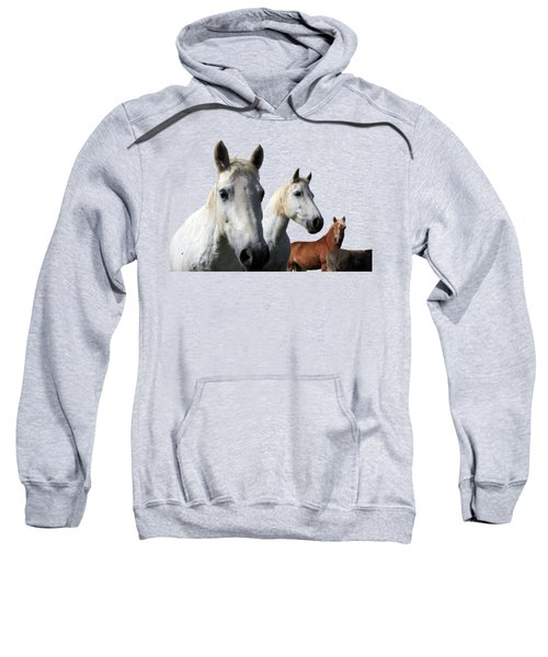 White Camargue Horses Sweatshirt