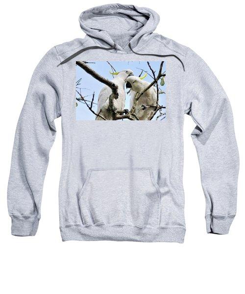 White Cockatoos Sweatshirt