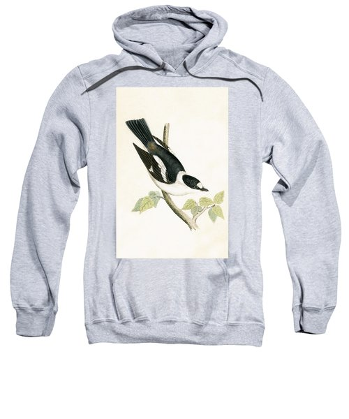 White Collared Flycatcher Sweatshirt by English School