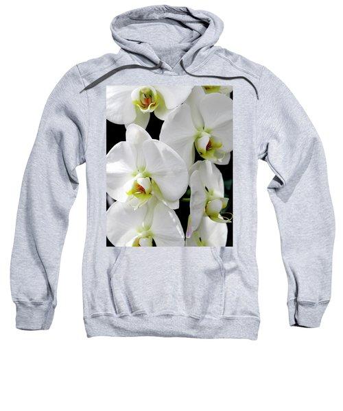 White Orchid Sweatshirt