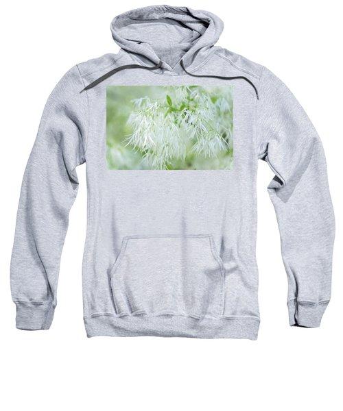 White Fringetree Sweatshirt