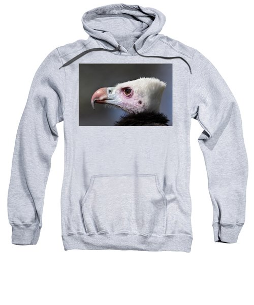 White-headed Vulture Portrait Sweatshirt