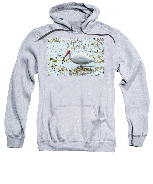 White Ibis Sweatshirt