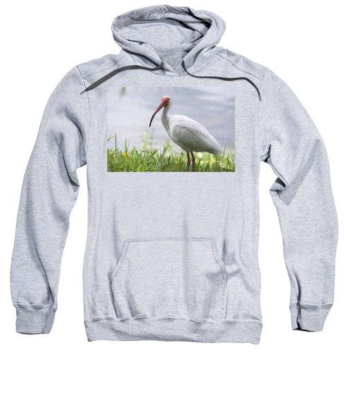 White Ibis  Sweatshirt by Saija  Lehtonen