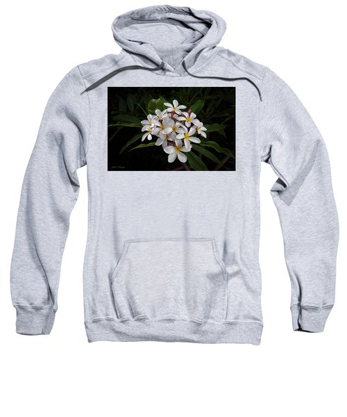 White Plumerias In Bloom Sweatshirt