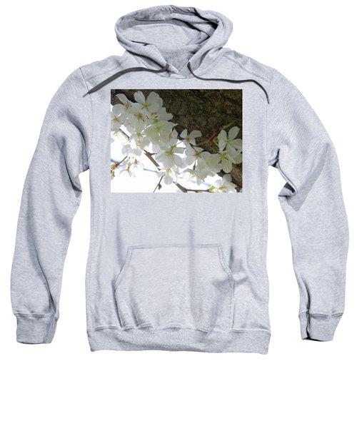 Dogwood Branch Sweatshirt