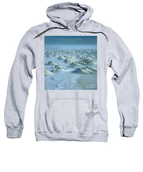 Whooper Swans In Snow Sweatshirt