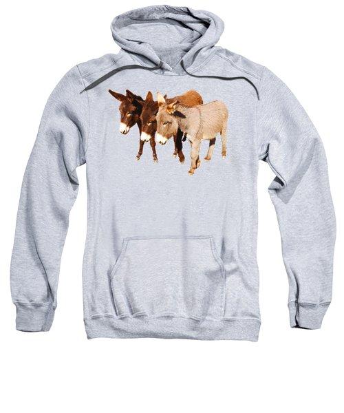 Wild Burro Buddies Sweatshirt by Sandra O'Toole