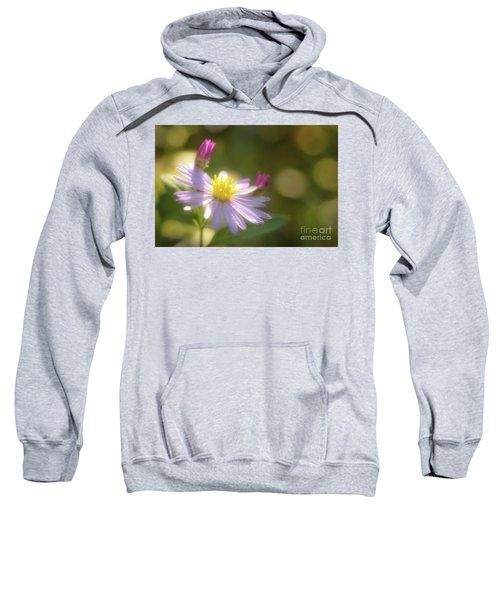 Wild Chrysanthemum Sweatshirt by Tatsuya Atarashi