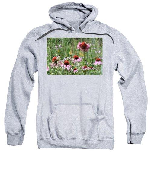 Wild Coneflowers Sweatshirt