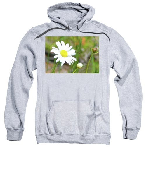 Wild Daisy With Visitor Sweatshirt