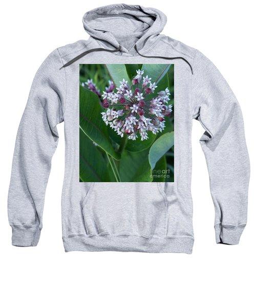Wild Flower Star Burst Sweatshirt