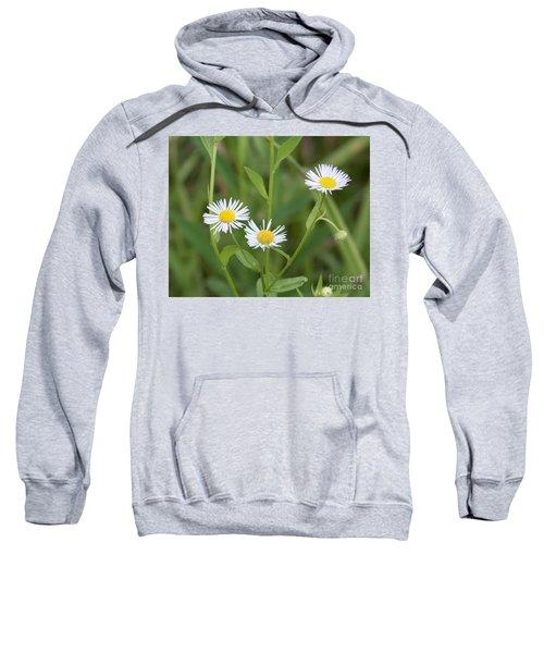 Wild Flower Sunny Side Up Sweatshirt