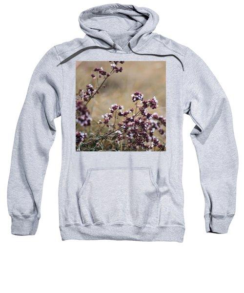 Wild Herbs  #herbs Sweatshirt by Mandy Tabatt