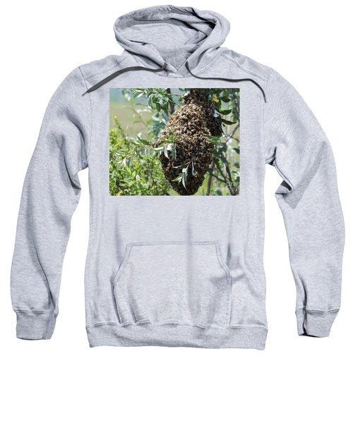 Wild Honey Bees Sweatshirt