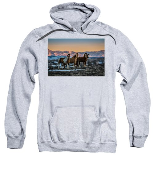 Wild Horse Group Sweatshirt