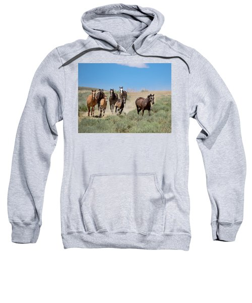 wild mustangs on the run to the water hole in Sand Wash Basin Sweatshirt