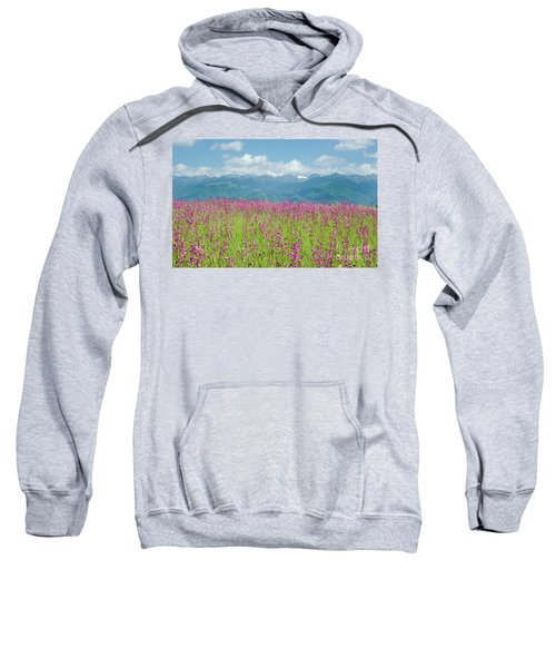 Wildflower Meadows And The Carpathian Mountains, Romania Sweatshirt