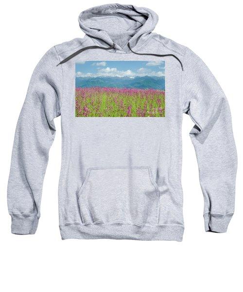 Wildflower Meadows And The Carpathian Mountains, Romania Sweatshirt