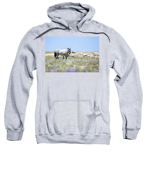 Wildflowers And Mustang Sweatshirt
