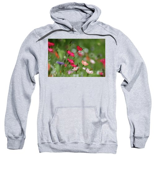 Wildflowers Meadow Sweatshirt