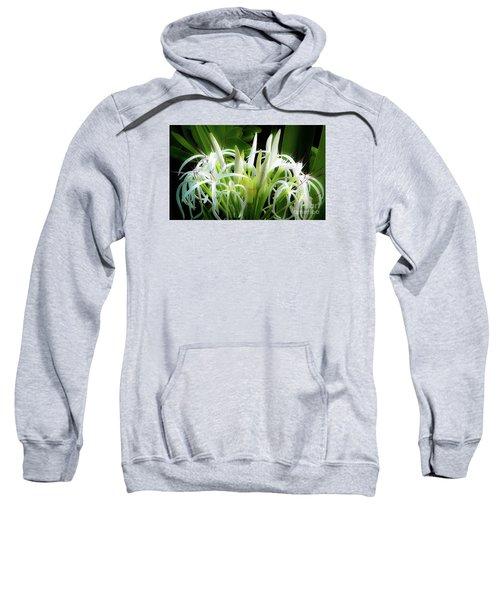 Wildflowers Of Hawaii Sweatshirt