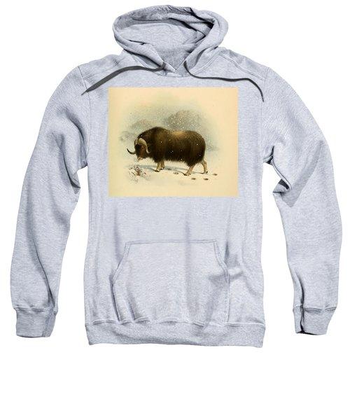 Wildoxensheepgo Sweatshirt