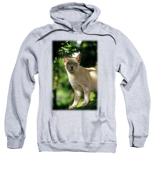Wilham Sweatshirt