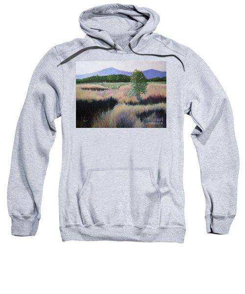 Willamette Evening Shadows Sweatshirt