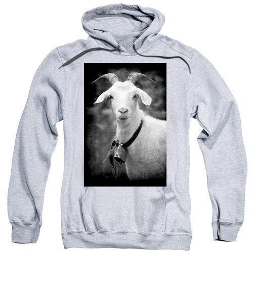Willhelm Of The Alps Sweatshirt