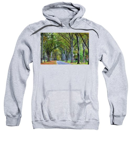 Willow Oak Trees Sweatshirt