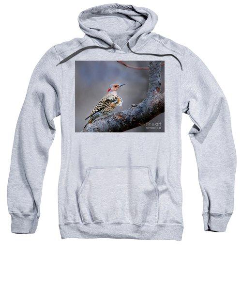 Wind Blown Flicker Sweatshirt