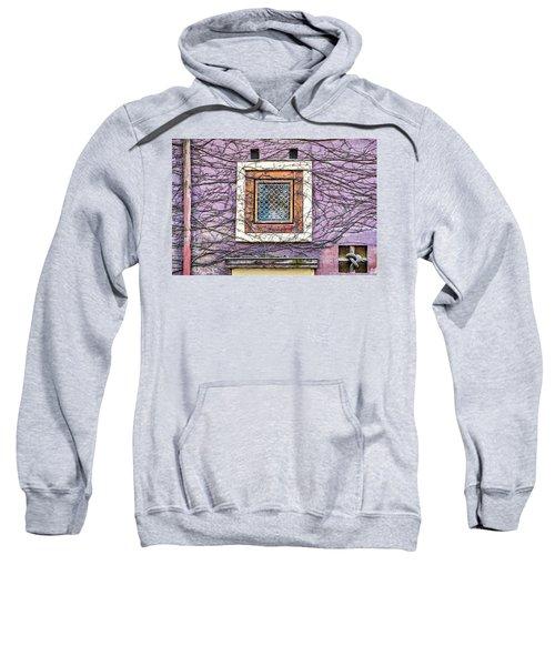 Window And Vines - Prague Sweatshirt