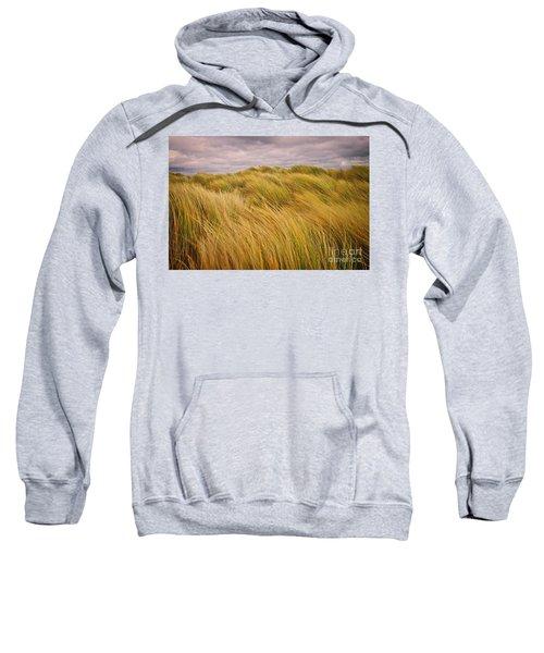 windswept Grasses Sweatshirt