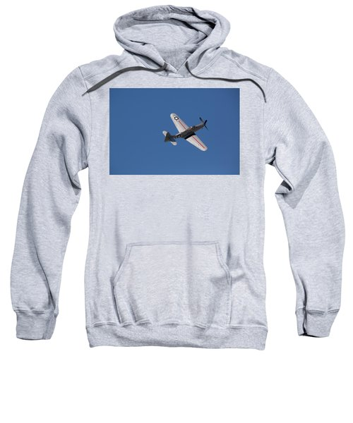 Wings Sweatshirt