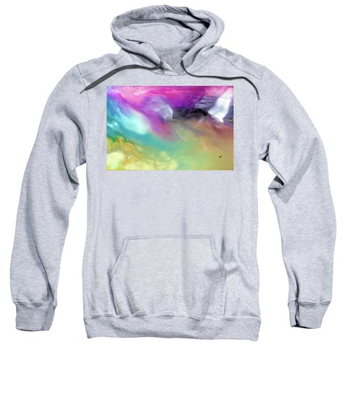 Wings Of Flight  Sweatshirt