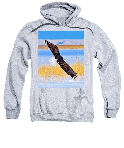Wingspan Sweatshirt