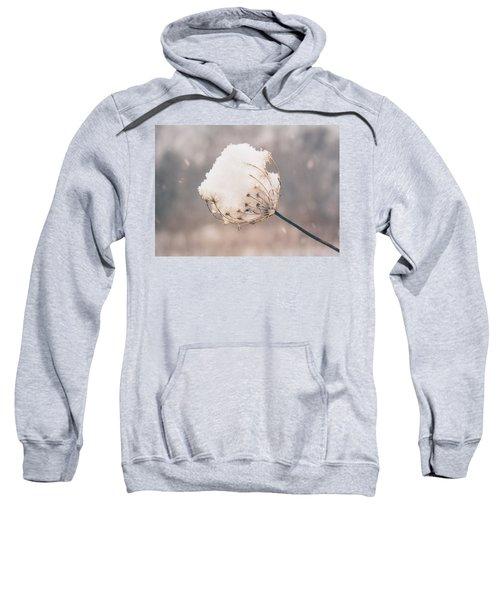 Winter Beauty Sweatshirt
