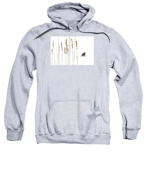 Winter Came Suddenly Sweatshirt