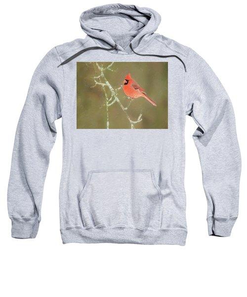 Winter Cardinal Sweatshirt